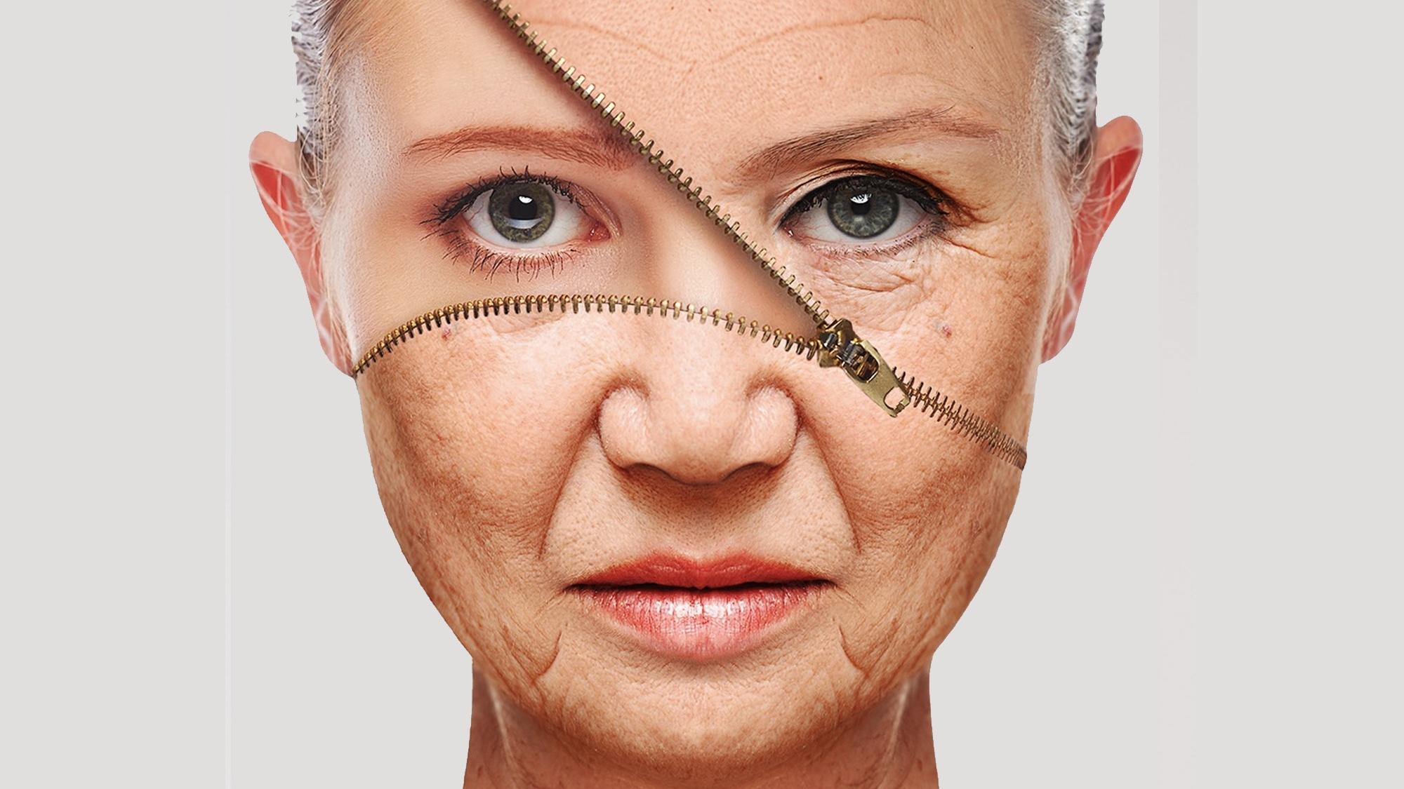 ¿Se puede revertir el envejecimiento? (3)